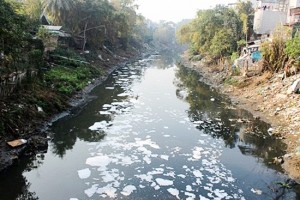 Too many managers, difficult for water pollution treatment